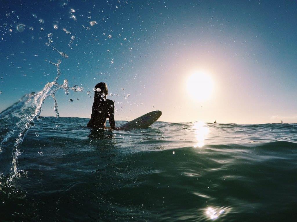 Pomm´s avontuurlijk in het paradijselijke Hawaii